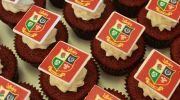 Lions cupcakes